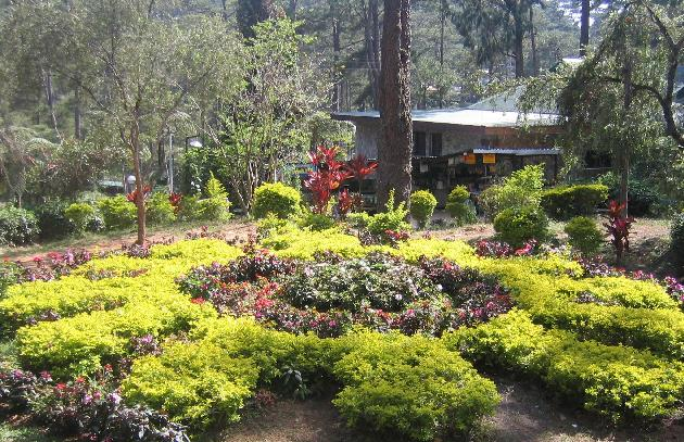 Bangalore To Yercaud Package Tour
